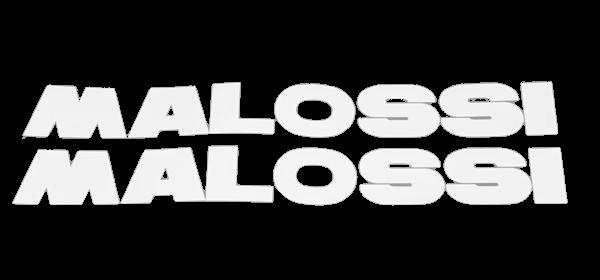 Malossi 27cm x 3,5cm wit 2-delig sticker set